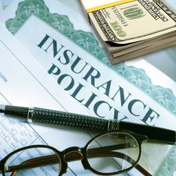 insurance-policy-cash