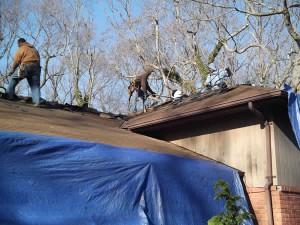 melville-tarp-roof